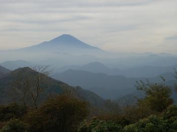 丹沢よりはるか富士を臨む.jpg