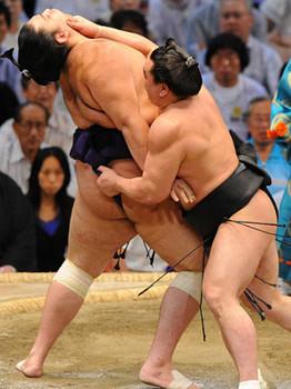 大相撲2.jpg