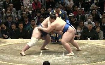 大相撲4.jpg