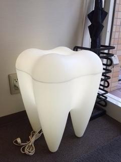 歯科医_6252.JPG