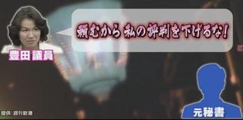 豊田真由子2.jpg