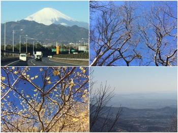 富士の高嶺に雪.jpg